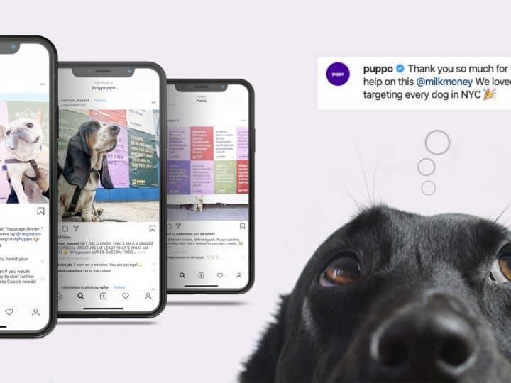 Puppo แบรนด์อาหารสุนัขทำ Personalized Advertising ด้วยโปสเตอร์กว่า 100,729 ชิ้นเพื่อสุนัขทุกตัวในนิวยอร์ก