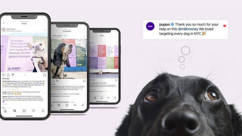 Every Dog has Its Ad แคมเปญการตลาดแบบ Personalization ของ Puppo ด้วยการทำ Personalized Advertising ผ่านโปสเตอร์กว่า 100,729 ชิ้น ให้สุนัขทุกตัวทั่วนิวยอร์ก