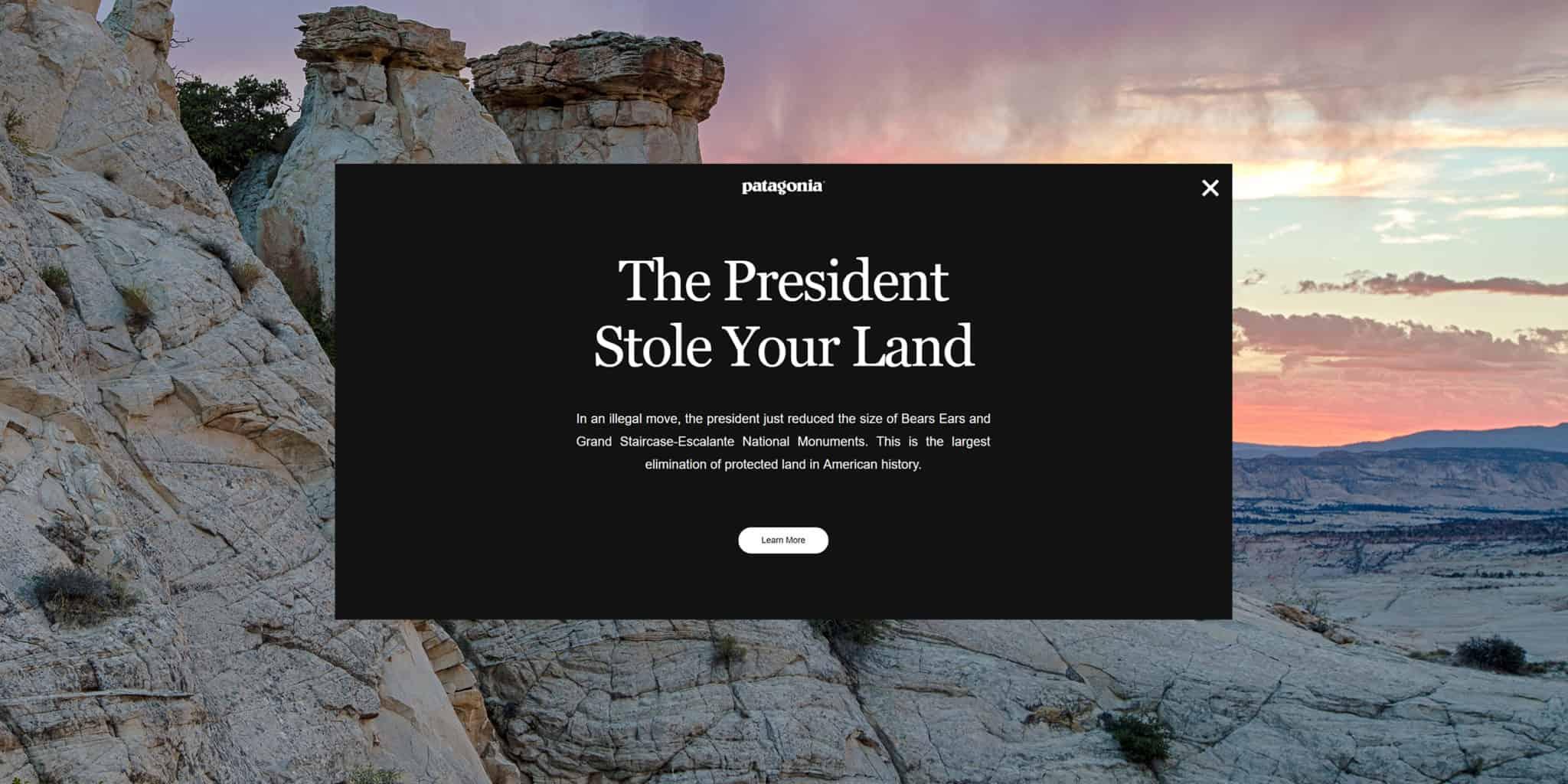 Brand Democracy แบรนด์ Patagonia ยื่นฟ้อง Trump เพราะหั่นป่าสงวนแห่งชาติ