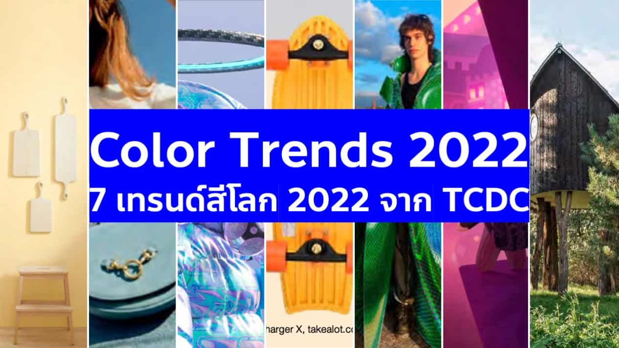 7 Color Trends เทรนด์สี 2022 จากรายงาน TCDC