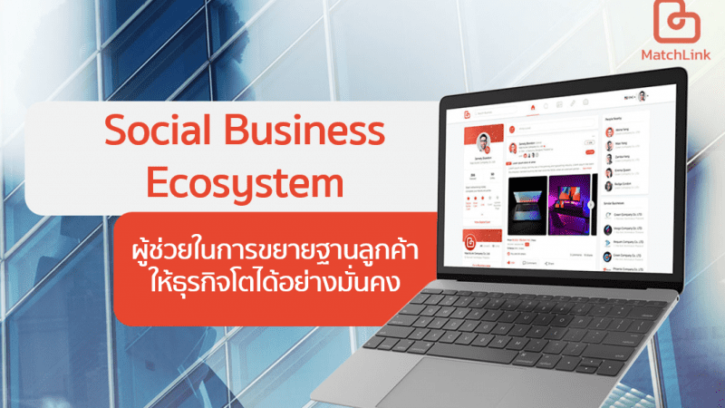 Matchlink new feature Social Business Ecosystem